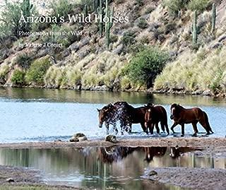 Best wild horses arizona salt river Reviews
