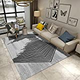 Schmutzfangmatten Teppich Rund Kinderzimmer Graue Wohnzimmer-Teppich-Linie-Dekorationsdrucken weiche rechteckige Nicht-Fading 80X160CM Teppich Draussen Outdoor