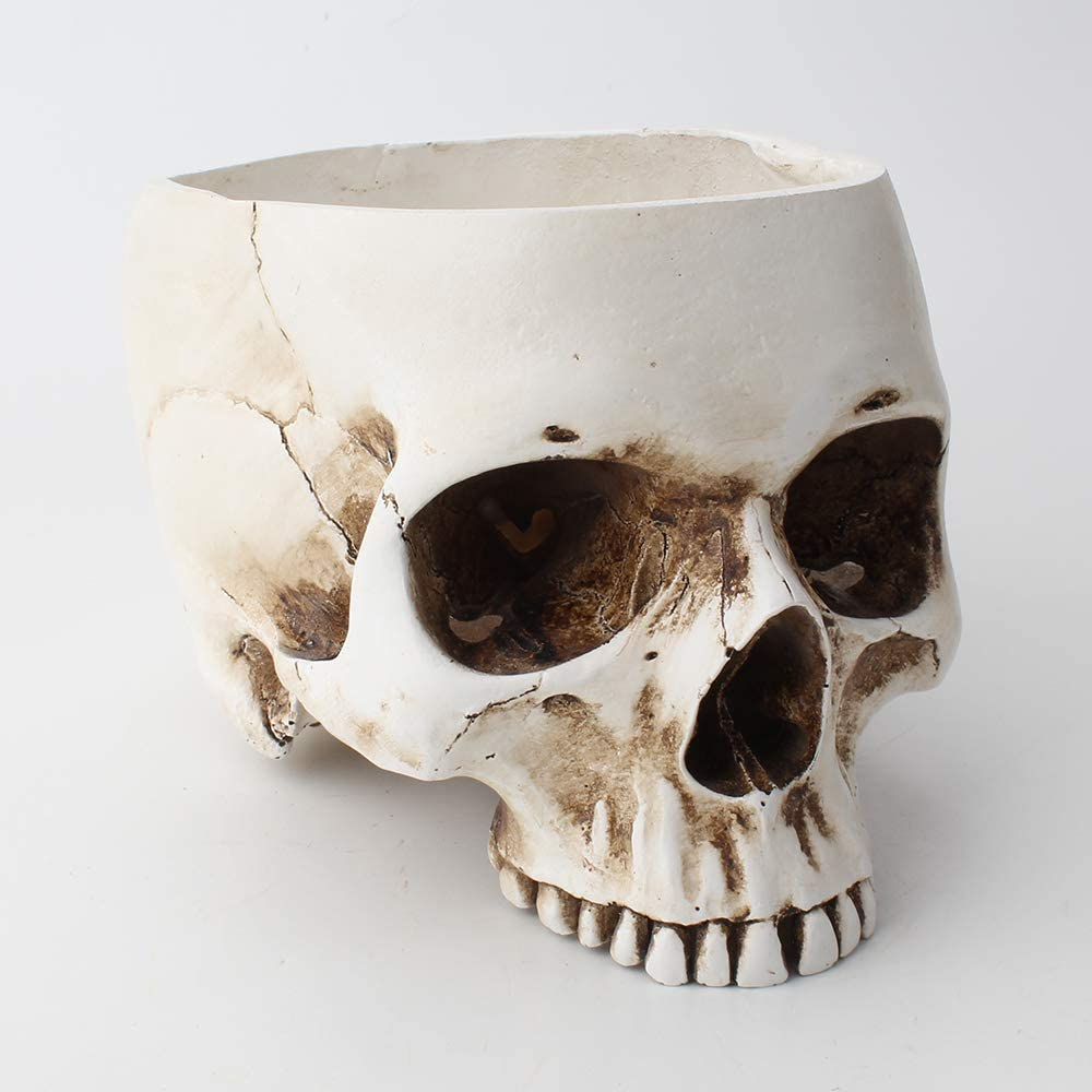 Modern Resin Max 51% OFF Skull Shaped Head Flower Contain Design Pot Quantity limited Planter