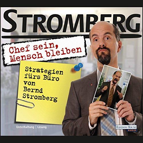 Chef sein, Mensch bleiben. Strategien fürs Büro von Bernd Stromberg audiobook cover art