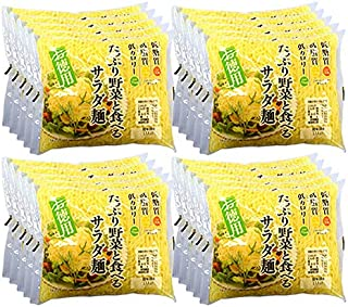 アクツ お徳用たっぷり野菜と食べるサラダ麺 ×20入り