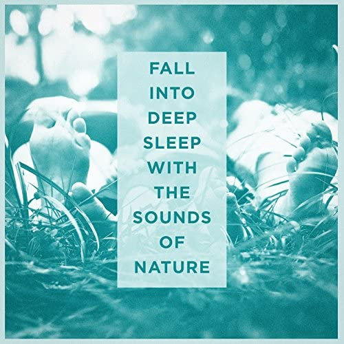 Sounds of Nature, Relax Meditate Sleep & Rest & Relax Nature Sounds Artists