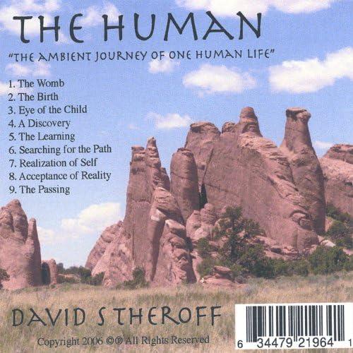 David S Theroff