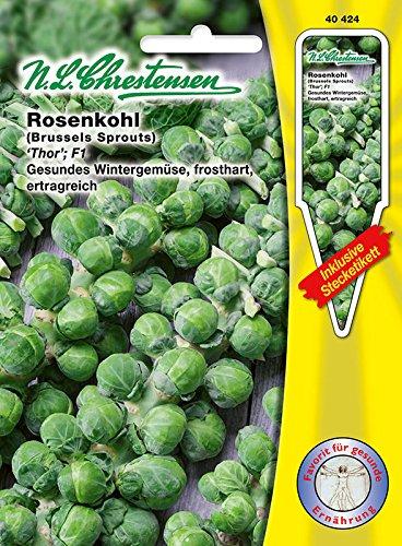 Rosenkohl \'Thor\' F1 , frosthart, ertragreich, gesundes Wintergemüse ( mit Stecketikett)