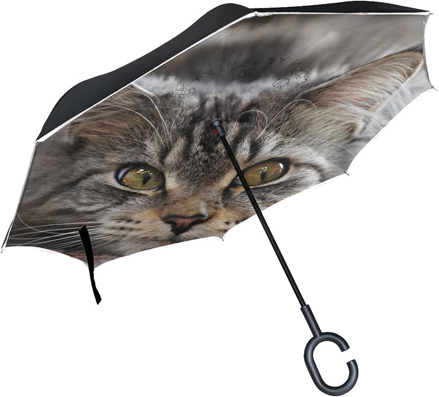 Animal Cat Maine Coon Fluffy Blackandwhite Small Animated Cute Pet Ingreened Umbrella Large Double Layer Outdoor Rain Sun Car Reversible Umbrella