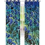 Cortina opaca aislante térmico Ocean School of Tang Fish Corals W52 x L72 Drape para puerta de cristal