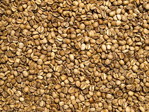 Rohkaffee - India Robusta Parchment (500g)