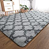 YOH Modern Soft Fluffy Shaggy Area Rug for Bedroom Living Room Indoor Home Decorative Accent Floor Carpet, Rectangle Non-Slip Plush Furry Fur Rugs for Dorm Kids Room Baby Nursery 5x8 Feet, Dark Grey