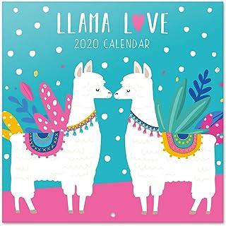 ERIK - Calendario de pared 2020 Llamas, 30 x 30 cm (incluye póster de regalo)