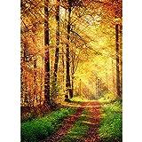 Fondos de fotografía de Bosque de otoño Fondo de fotografía de Puente de Madera Tela de Vinilo 3D Impreso por Ordenador para Estudio fotográfico A2 2,7x1,8 m