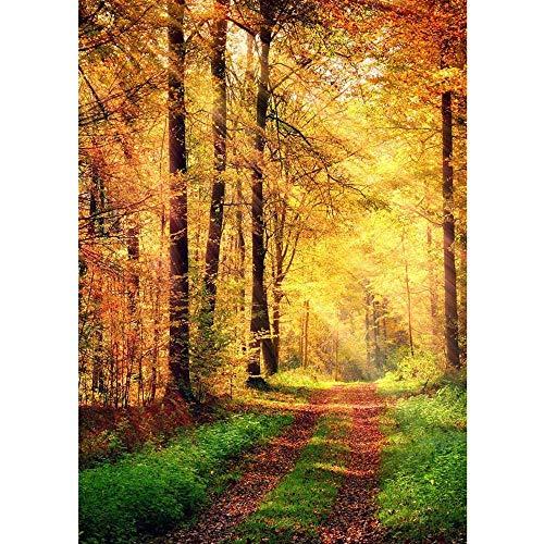 Autumn Forest Photography Backdrops Wooden Bridge Photo Background 3D Vinyl Cloth Printer for Studio Photo A1 9x6ft/2.7x1.8m
