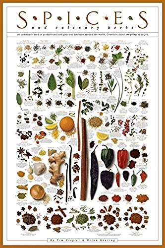 Spices and Culinary Herbs Curry Garam Masala Parsley Sage Rosemary Thyme Ginger Pickling Garlic Cumin Paprika Cayenne Basil Cilantro Herbs de Provence Print Poster 24x36