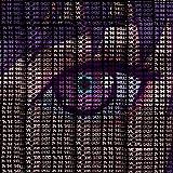 sustain++;(ending ver.)〜『攻殻機動隊 SAC_2045』エンディングテーマ〜
