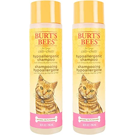 Burt's Bees for Cats Hypoallergenic Cat Shampoo with Shea Butter & Honey | Best Shampoo for Cats with Dry or Sensitive Skin | Cruelty Free, Sulfate & Paraben Free, pH Balanced for Cats - 10 oz