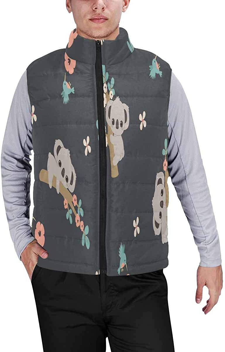 InterestPrint Men's Soft Stand Collar Jacket for Fishing Hiking Cycling Dinosaurs Smiling