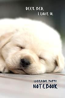Labrador Puppy Notebook - Deer Bed, I Love U.: Cute Yellow Labrador Retriever Lover 6x9
