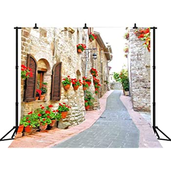 10x12 FT Backdrop Photographers,Latin Brochure Label Italian Town Province Vintage Style Menu Sign Art Print Background for Baby Shower Birthday Wedding Bridal Shower Party Decoration Photo Studio