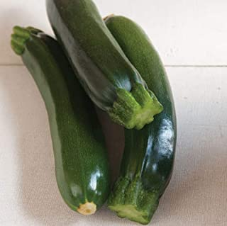 Best raven zucchini seeds Reviews