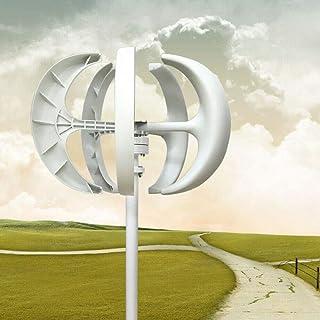 RDFlame - Linterna, sistema de energía del viento, 600 W, 5 hojas, generador de viento con controlador y placa de brida, turbina vertical (24 V, color blanco)