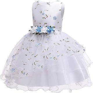Zhhlaixing Flower Princess Wedding Dress Christmas Dresses Toddler Little Big Girls Birthday Party Dress Embroidered Bridesmaid Girl Dress Sleeveless Elegant Tulle Bow Tutu Dress