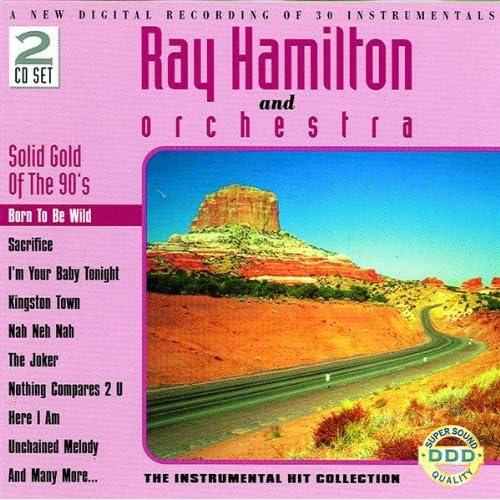 Hijo De La Luna - Instrumental Cover by Ray Hamilton