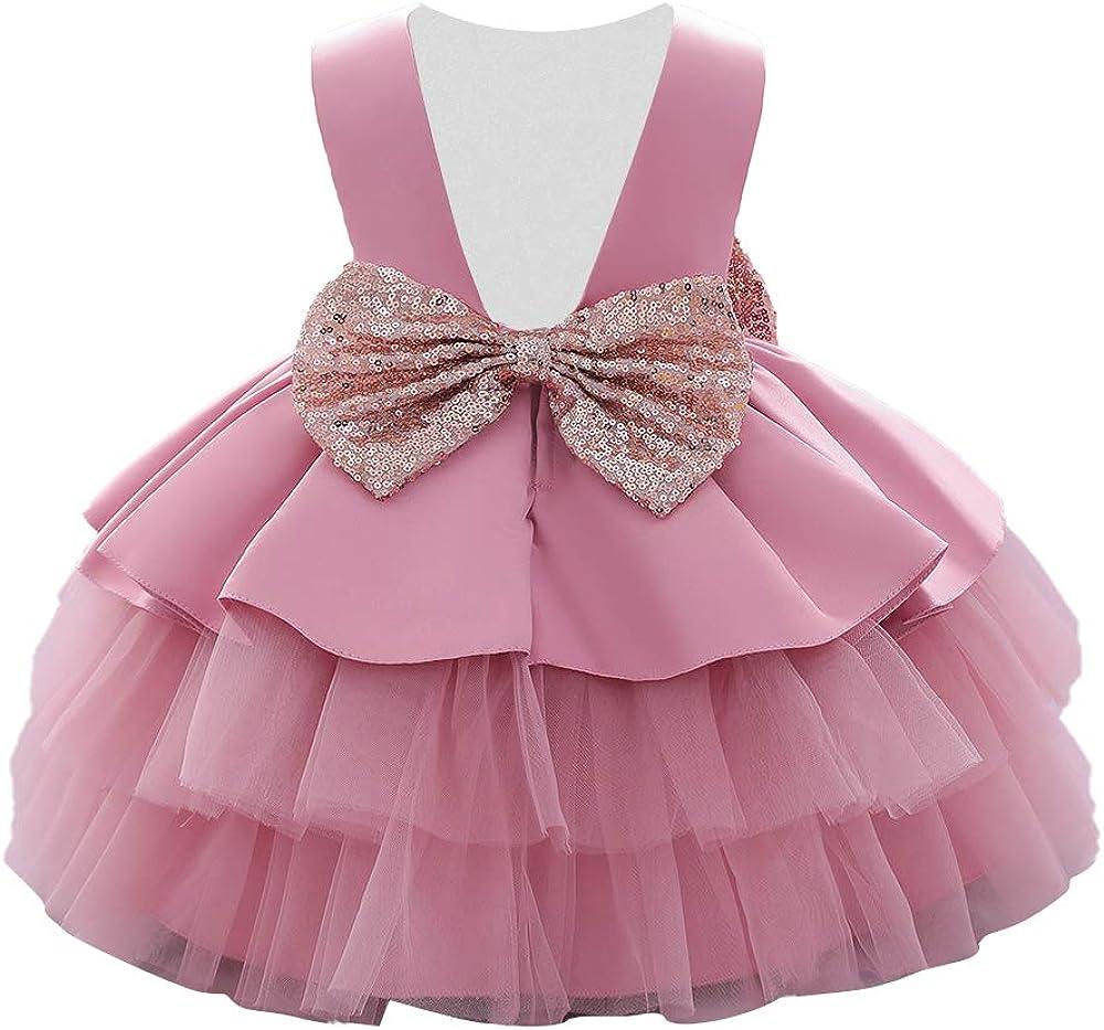 WZSYGDTC Baby Girls Bowknot Flower Dresses Birthday Party Dresses Toddler Wedding Christmas Tutu Gown