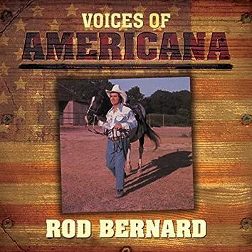 Voices Of Americana: Rod Bernard