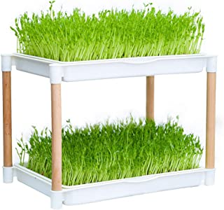 Seed Sprouter Double Layers Sprout Trays with Solid Wood Support Frame BPA Free PP Soil-Free Big Capacity Healthy Wheatgra...