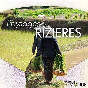 Paysages de rizières (Paysages du monde)