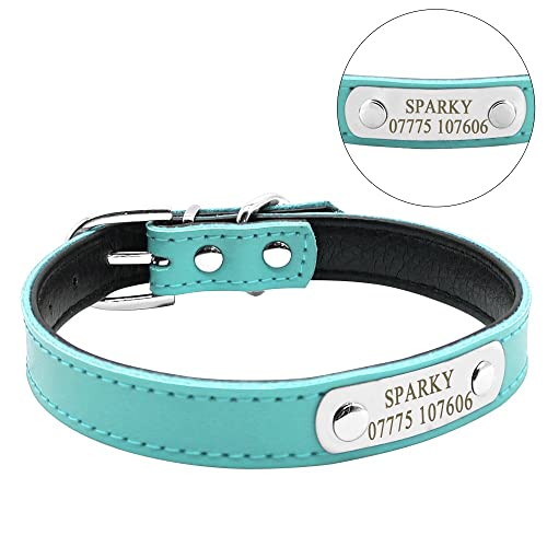 43261a9b6240 Didog Cute Leather Padded Custom Dog Collar with Engraved Nameplate ID  Tag,Fit Cats and
