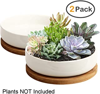 Succulent Pots, ZOUTOG 6 inch White Ceramic Flower Planter Pot with Bamboo Tray, Pack of 2 - Plants Not Included