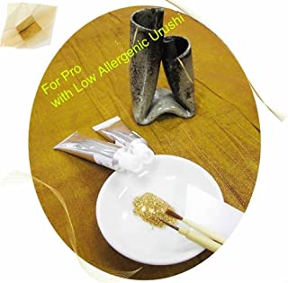 Kintsugi Repair Kit for Pro with Genuine Gold Powder & Low Allergenic Urushi, Kintsukuroi