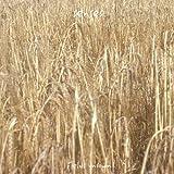 Fields Unsown