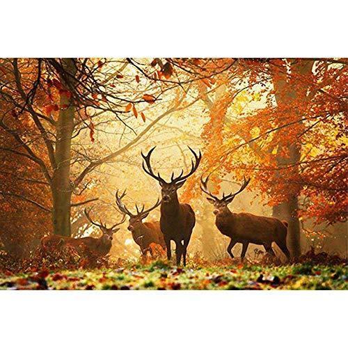 Puzzle 1000 Piezas Ciervo bosque 70x50cm Rompecabezas