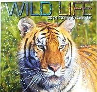 Wild Life 201412月予定表