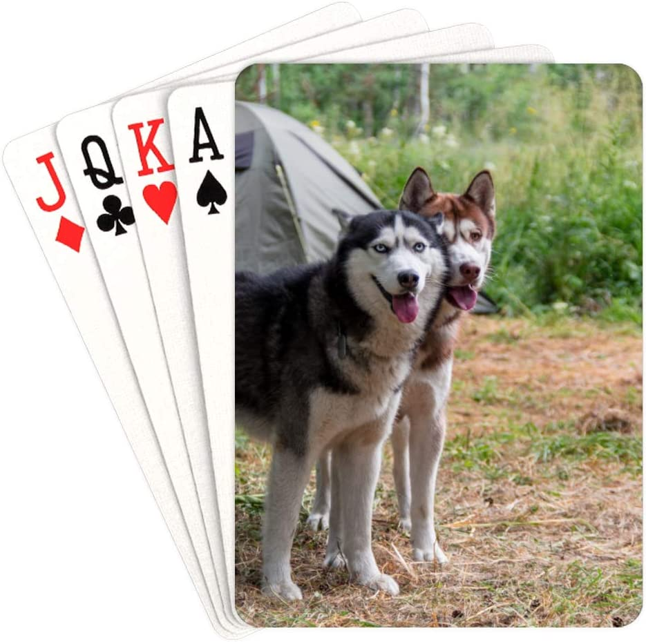 WUTMVING Mens Playing Cards Two Dogs in Gorgeous Car A Tent low-pricing Print