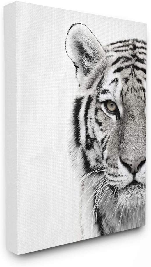 Stupell Limited time trial price Industries Tiger Close Up Ca Photography White Minneapolis Mall Black and