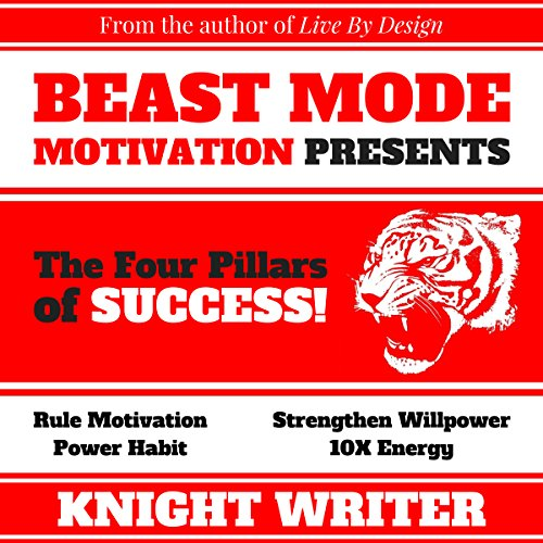 The Four Pillars of Success audiobook cover art