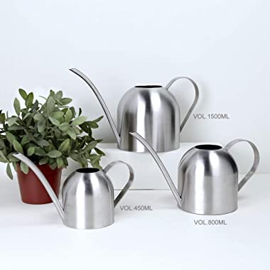 E.Palace Stainless Steel Water Can for Indoor Plants and Garden (15 oz)