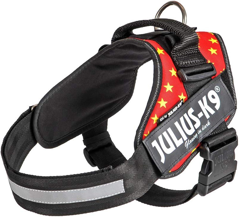 Dog Leash, Chest Strap, Vest, Schnauzer, Dog Leash, Dog Leash (color   Red)