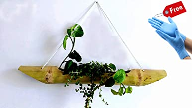 RARE PRODUCTS OOTY Hand Made Bamboo Hanging Planter with Disposable Glove