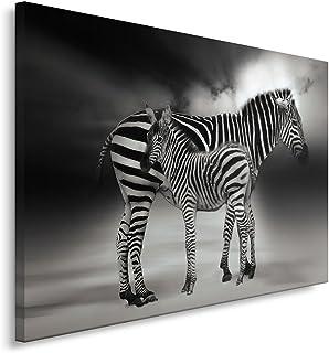 Feeby. Cuadro en lienzo - 1 Parte - 30x40 cm, Imagen impresión Pintura decoración Cuadros de una pieza, CEBRAS, NATURALEZA, BLANCO Y NEGRO