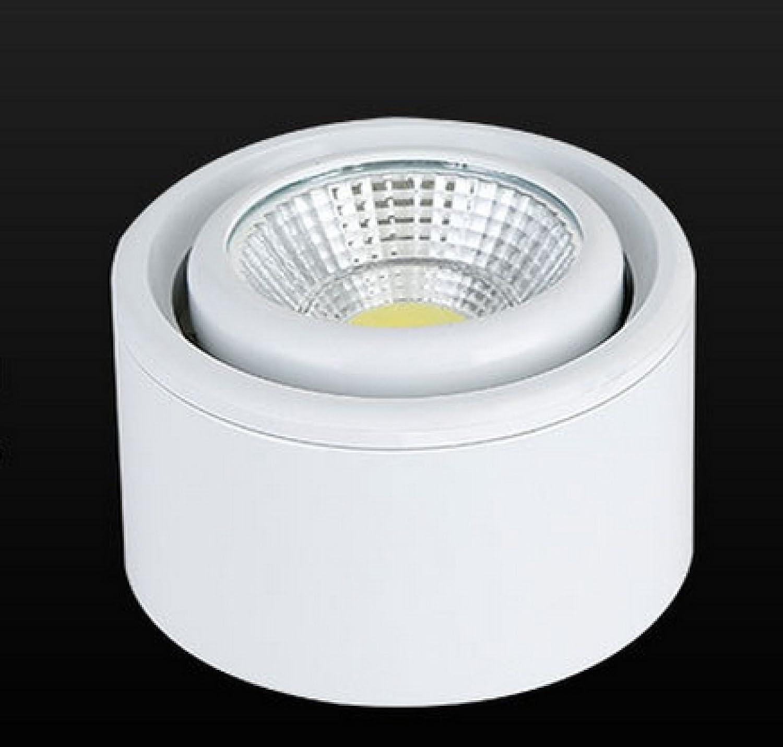Lampe Montée En Surface Plafond LED Luminaire Plavoitured Mur Du Couloir ANTERIEUR Angle Réglable La Tension Universelle,blanc-4000KNaturallumière