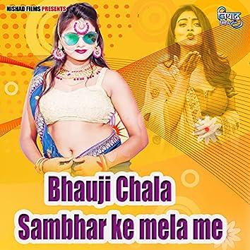 Bhauji Chala Sambhar ke mela me