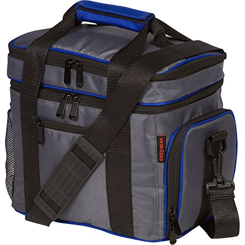 Insulated Cooler Lunch Bag - Multiple Storage Pockets - For Work and Family Outings by Cozy Bear Gray with Blue Trim