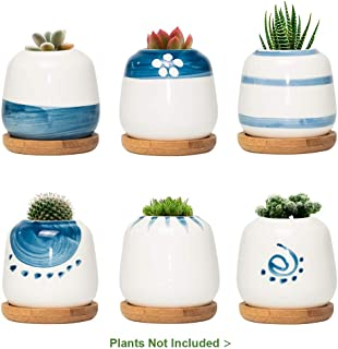 FairyLavie 2.5 Inch Ceramic Mini Plant Pots, Japanese Style Succulent Planter Cute Pots for Plants with Bamboo Tray, Perfect for Home Office Decor and Ideal Gift for Family Friends Colleague, Set of 6