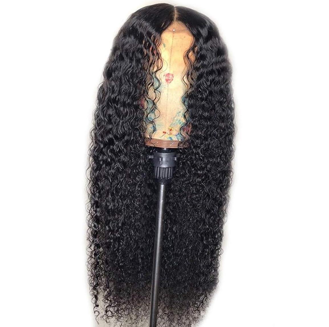 樫の木シャッター寄生虫女性レースフロントかつらカーリー合成赤ちゃん髪高品質かつら耐熱ファイバーローズ髪黒56センチ