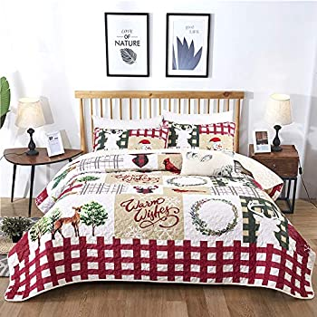 Best christmas quilts Reviews