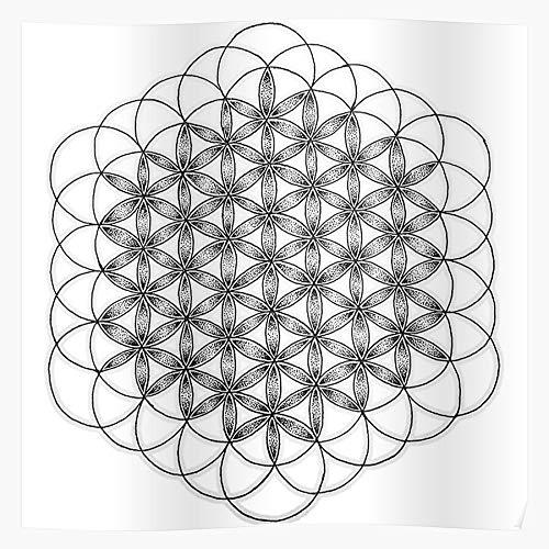 marbeian Life Dots Sempiternal of White BMTH and Tumblr Flower Black Das eindrucksvollste und stilvollste Poster für Innendekoration, das derzeit erhältlich ist