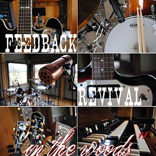 Feedback Revival